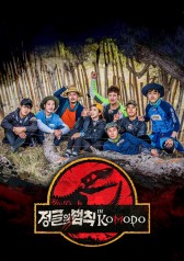 Law Of The Jungle In Komodo